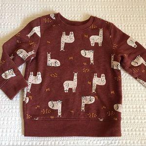 Other - Alpaca Sweatshirt